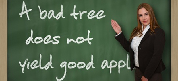 Bad Tree Not Yielding Good Apples